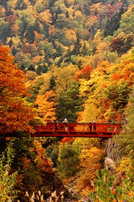 定山渓 北海道 :Jozankei Hokkaido Japan