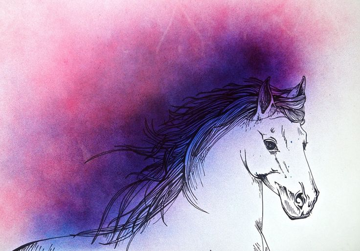 Horse drawing, marker pen and spray paint