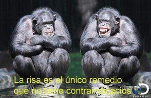 LOS POLÍTICOS ................(Humor Colombiano)
