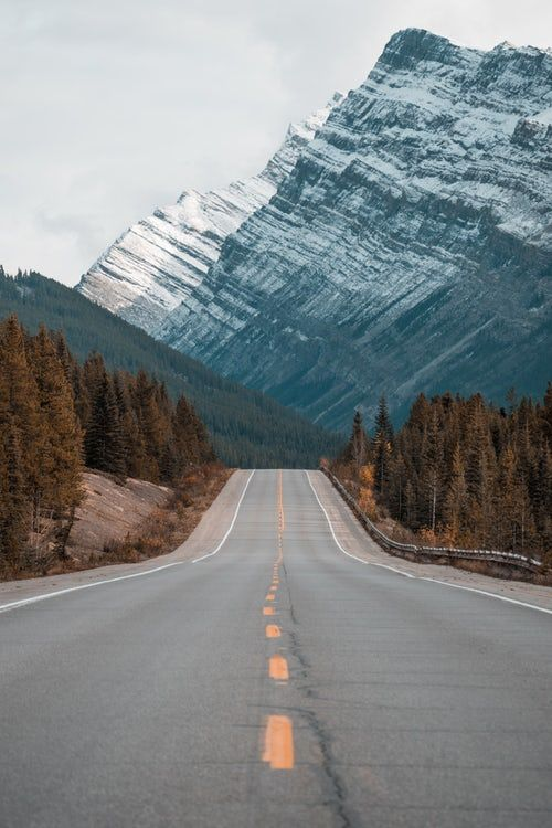 a tree lined mountain road with snowcapped mountains in the