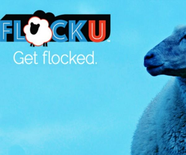 Share your ideas about campus life with FlockU.com, where you can get professional writing experience for free.  Get chosen to be a Flocker at your school and get $50.