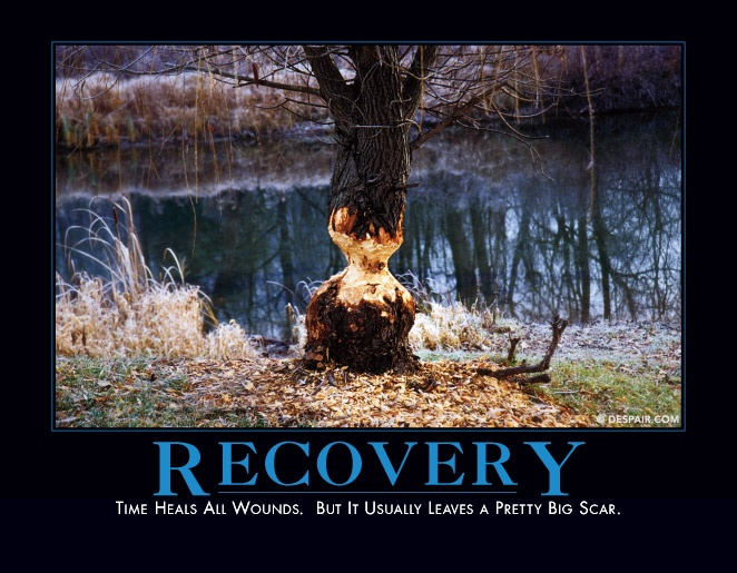 Recovery Demotivational Posters Pinterest Recovery