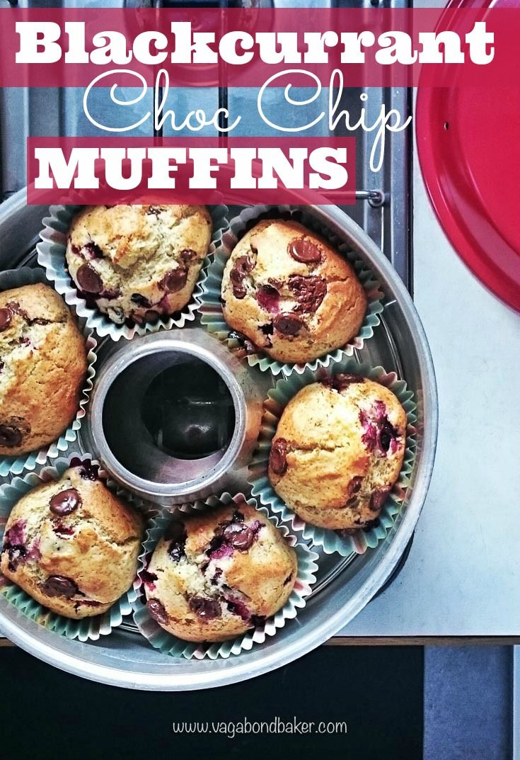 Blackcurrant Choc Chip Muffins, with a hint of cardamom to make them Scandinavian. The blackcurrants were picked in a Swedish garden!