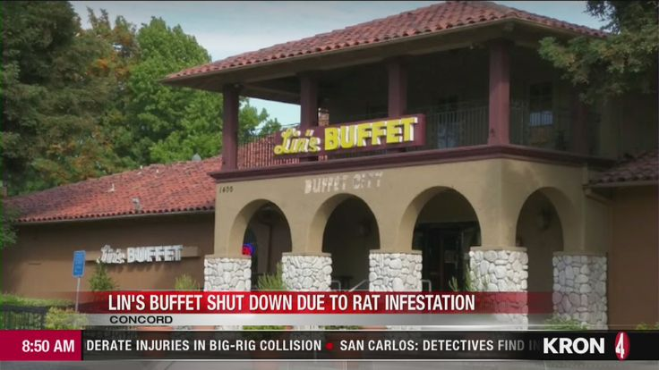 A Concord restaurant has been shut down due to a rat infestation, according to health officials.