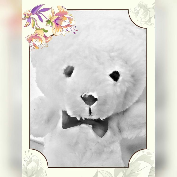 #Little #bear #white #pelouche #cute #TeddyBear ♡