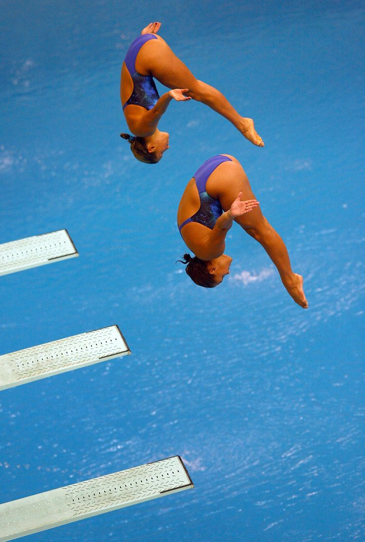 physics of springboard diving essay Springboard provides a customizable pathway to rigorous instruction with a focus on active learning and robust professional development.