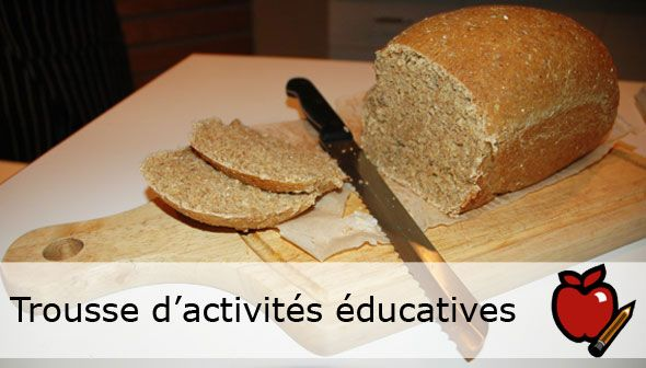 Gélatinisation de l'amidon? Coagulation des protéines? Il y a beaucoup de science dans une miche de pain!   Explorez les changements physiques et chimiques des différents ingrédients nécessaires à la fabrication du pain à l'aide de la trousse d'activités à télécharger gratuitement du site web du Musée