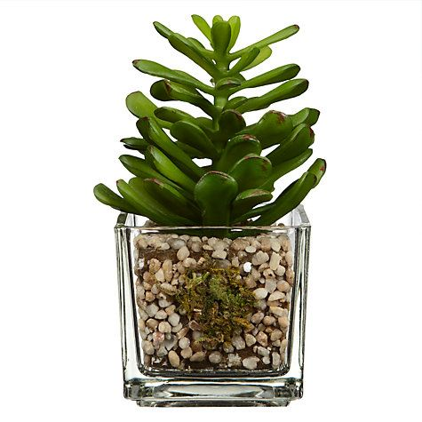 Buy House by John Lewis Artificial Mini Cactus, H11cm Online at johnlewis.com