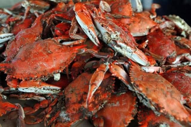 Crab Feast! August 29 SATURDAY from 5-7:00 pm Middlesex Volunteer Fire Department, 330 Virginia St, Urbanna  All you can eat crab feast. $28 pre-sale/$33 at the gate!!!!!  Golden beverages sold separately.  Tickets can be purchased at Big John's, Marshall's Drug, Harrow's Home Center, and Bethpage Campground. — at Middlesex County Volunteer Fire Department.