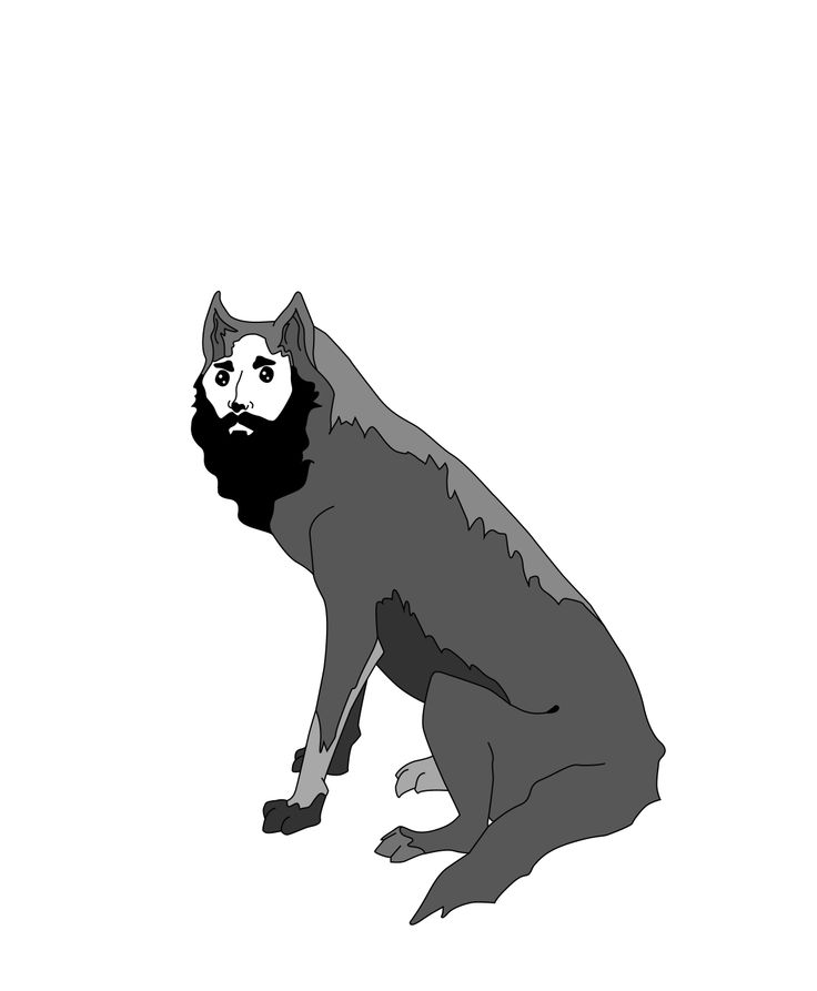 bearded wolf, personal designs Inspired by Australian's surf and skate crowd