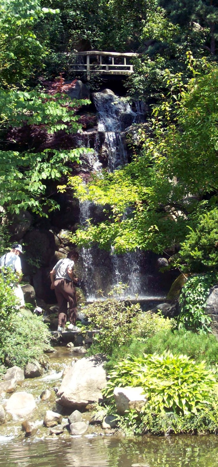 Anderson Japanese Gardens In Rockford Wedding Location