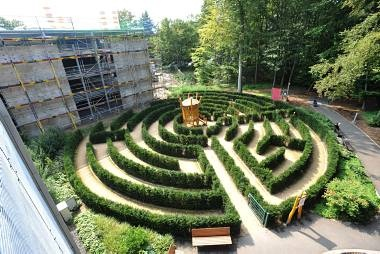 Large hedge Labyrinth in Germany.