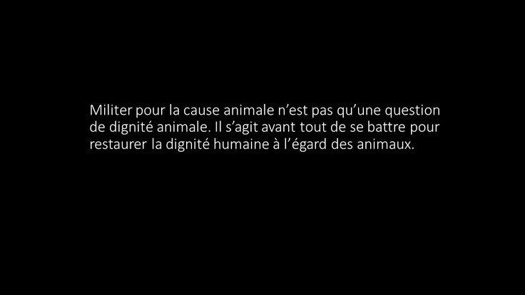 """Cause animale - """"Militer pour la cause animale n'est pas qu'une question de dignité animale. Il s'agit avant tout de se battre pour restaurer la dignité humaine à l'égard des animaux."""""""
