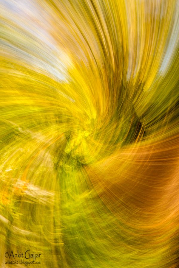 Ankit's Photography Blog: Zoom Burst with a Spin