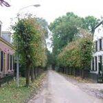 Nederhemert-Zuid is een monumentaal dorpje op een schiereiland, met prachtige boerderijen, een kasteel en een speeltuin. Het telt circa 45 inwoners. Behalve de kerk en het kasteel is de speeltuin met haar grote, schaduwrijke bomen een heerlijke plek om te vertoeven. Het dorpje heeft de status 'beschermd dorpsgezicht'. Gerelateerd