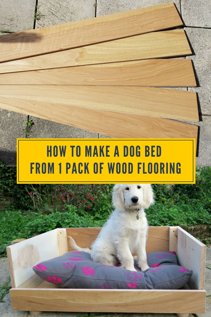 Are You Looking At Making Your Own Dog Bed? Then Take A Look How We