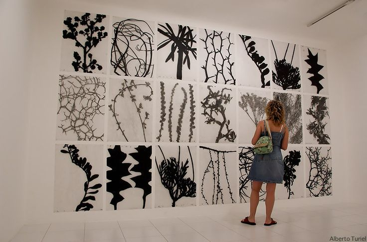 large scale charcoal drawings