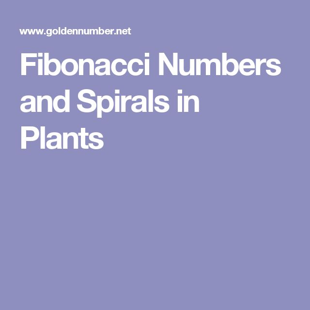 Fibonacci Numbers and Spirals in Plants