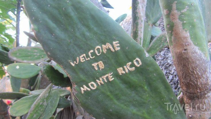 Монтеррико: тихоокеанское побережье Гватемалы