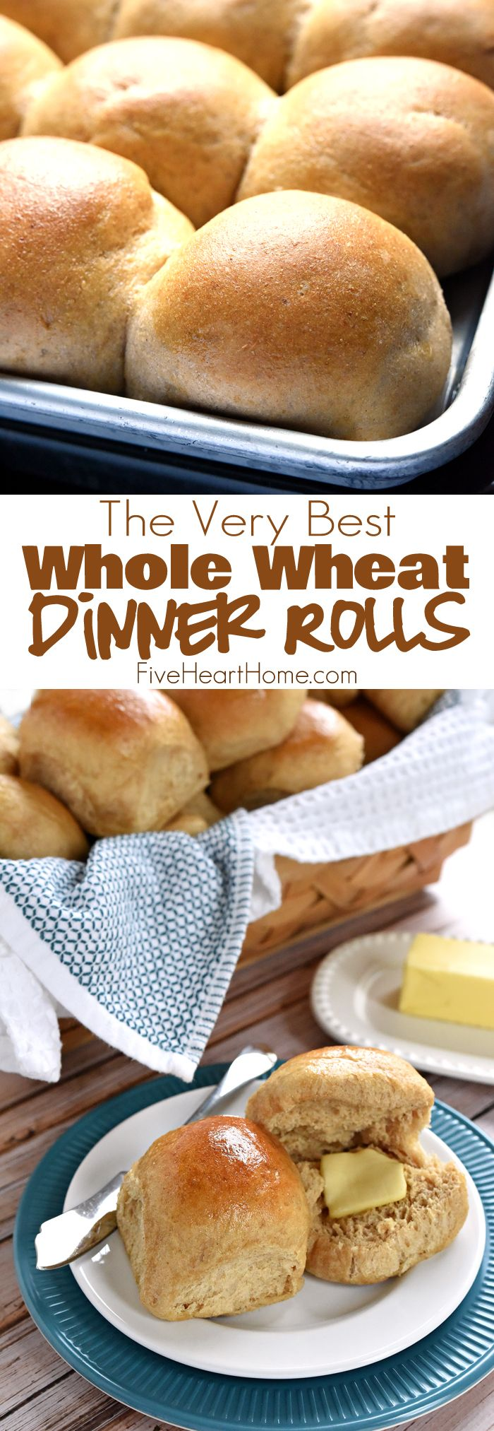 Homemade Whole Wheat Dinner Rolls ~ adapted from our incredibly popular Homemade Whole Wheat Bread recipe, these 100% whole wheat dinner rolls are soft, pillowy, moist, easy to make, and truly the BEST! | FiveHeartHome.com