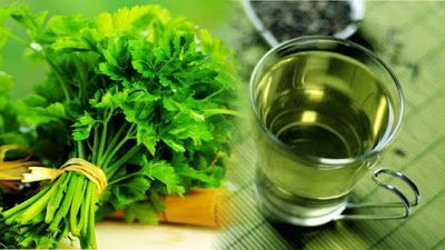 The Parsley Tea Is a Good Cure for UTIs, Ovary Cancer, Anemia and Kidney Stones