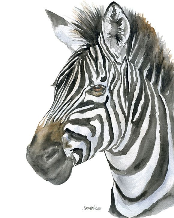 Zebra watercolor giclée reproduction. Head shot of another of my African animals. Portrait/vertical orientation. Printed on fine art paper using archival pigment inks. This quality printing allows ove