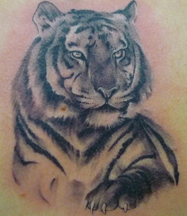 161 best tiger tattoos images on pinterest. Black Bedroom Furniture Sets. Home Design Ideas