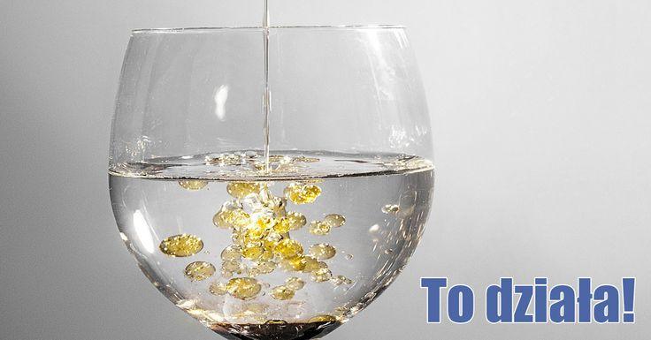Zabija bakterie Helicobacter pylori, koi nerwy, wzmacnia odporność i wiele więcej. Wystarczy pić go codziennie, a szybko zauważysz zmiany, który powstaną w...
