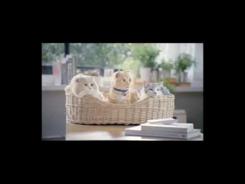 ▶ Aire Acondicionado HAIER Aqua, anuncio para TV - YouTube
