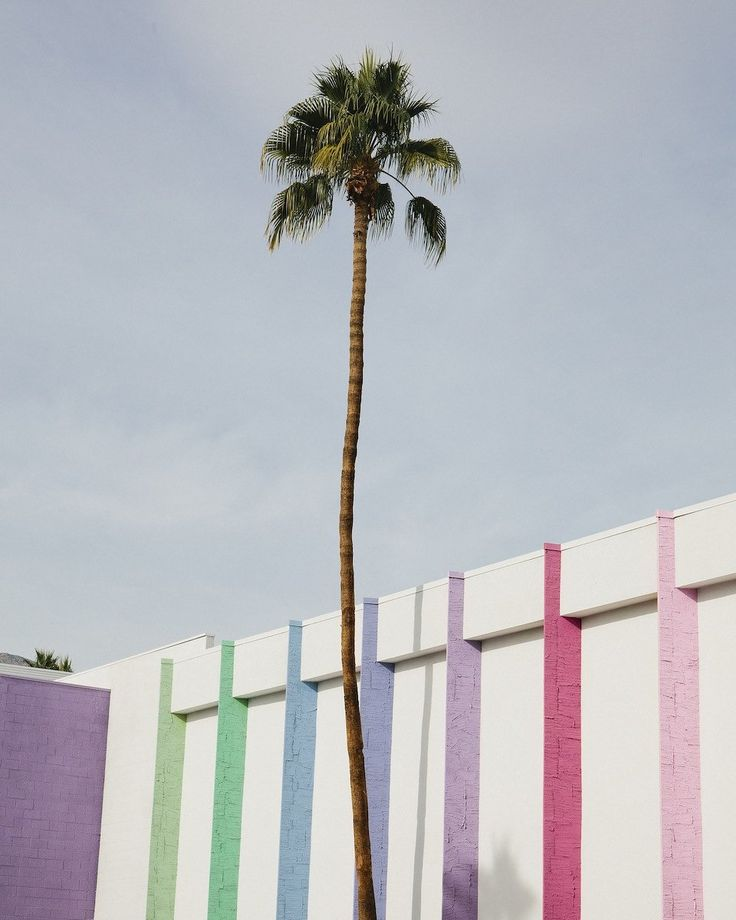 The best vintage shops and hidden treasures Palm Springs has to offer.