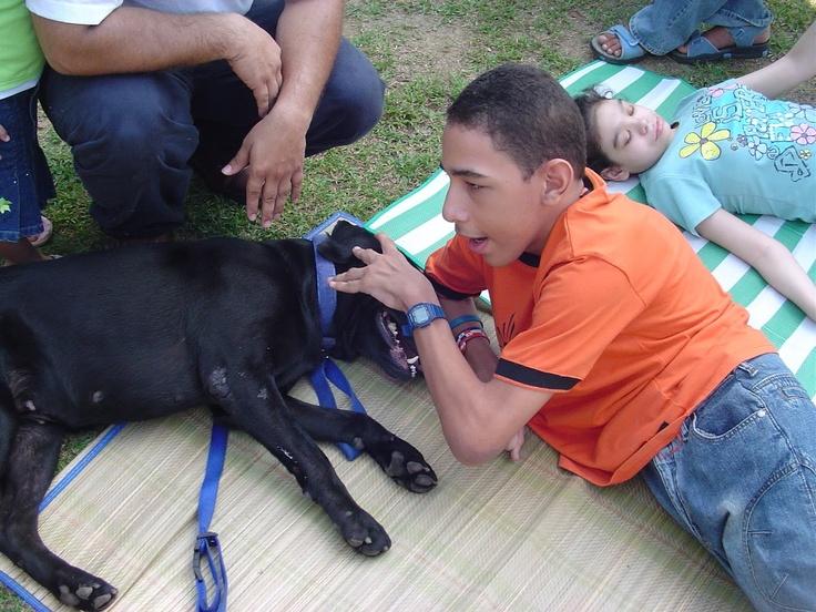La terapia asistida con animales resulta beneficiosa para la rehabilitación de múltiples enfermedades, como disfunciones infantiles (el autismo, el síndrome de Down, parálisis cerebral), también la timidez patológica, el mutismo, depresiones o procesos de duelo.