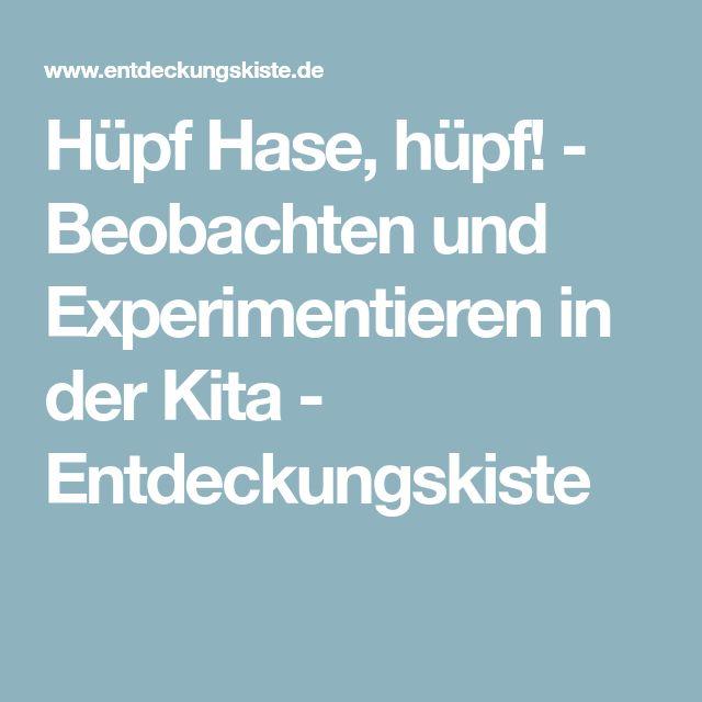 Hüpf Hase, hüpf! - Beobachten und Experimentieren in der Kita - Entdeckungskiste