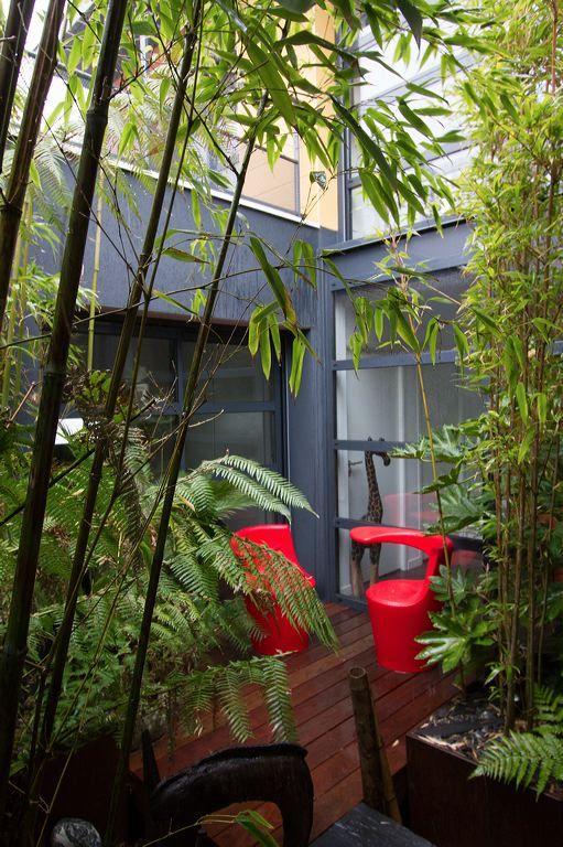 patio zen création SARL PAIN CONCEPT DESIGN PAYSAGE (FRANCE)