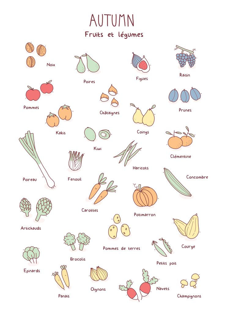 Autumn, fruits et légumes