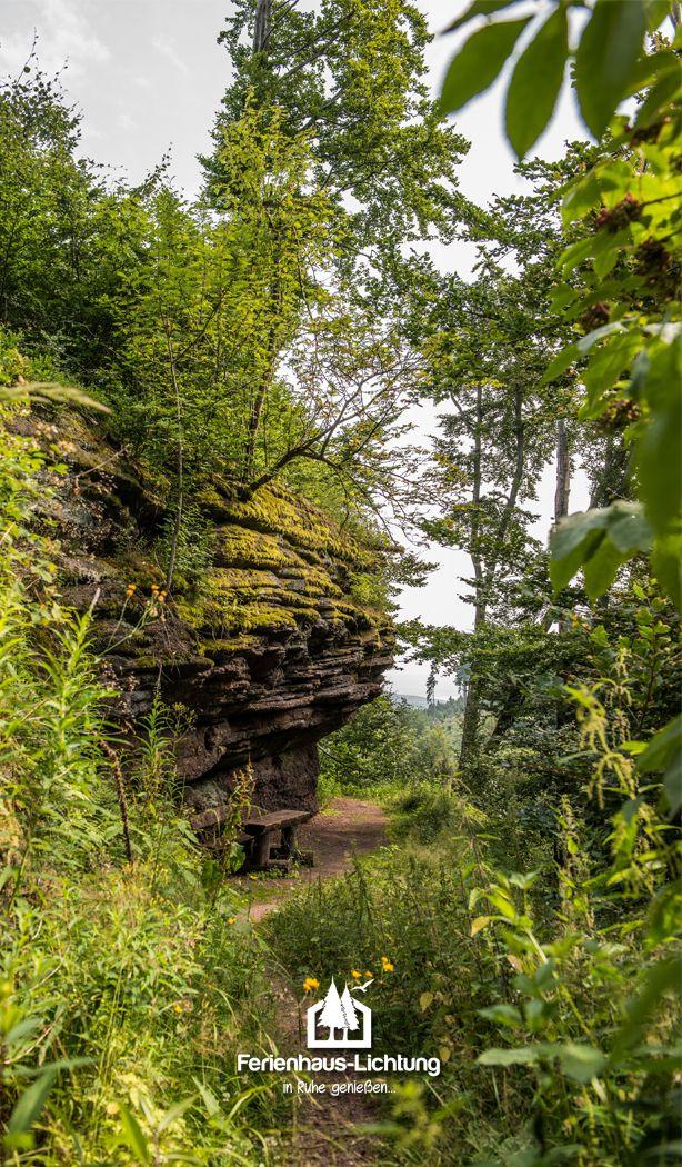 auf unserer Wanderung entdeckt...die Rennsteiggrotte #rennsteig #wald #ferienhaus #ferienhausurlaub #kurzurlaub #kurztrip #mtb #bikes #mountainbike #toptags #downhill #enduro #thüringerwald #thüringen #laufen #wandern #rennsteiggrotte #outdoors #hiking #wanderlust #explore #travel