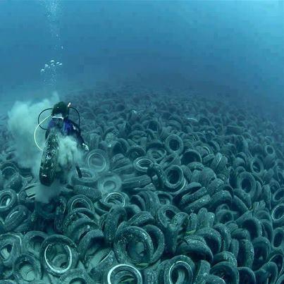 44 Besten Plastikm 252 Ll Im Meer Bilder Auf Pinterest