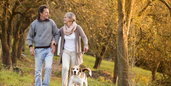 認知症予防に、ウィーキングで得られる6つ効果。認知症の情報