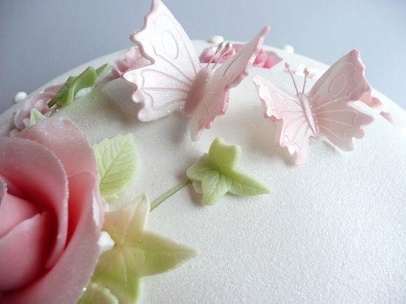 Butterflies - Cacas