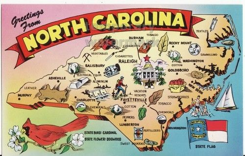 Greetins From North Carolina Illustrated Map Nc State Flag C1960s ...
