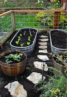 """vegetable garden---The tubs are """"galvanized stock tanks"""" -- cattle troughs. JB drilled ¼"""" holes throughout the bottom of the tubs for drainage and put down filter cloth before filling them with dirt."""