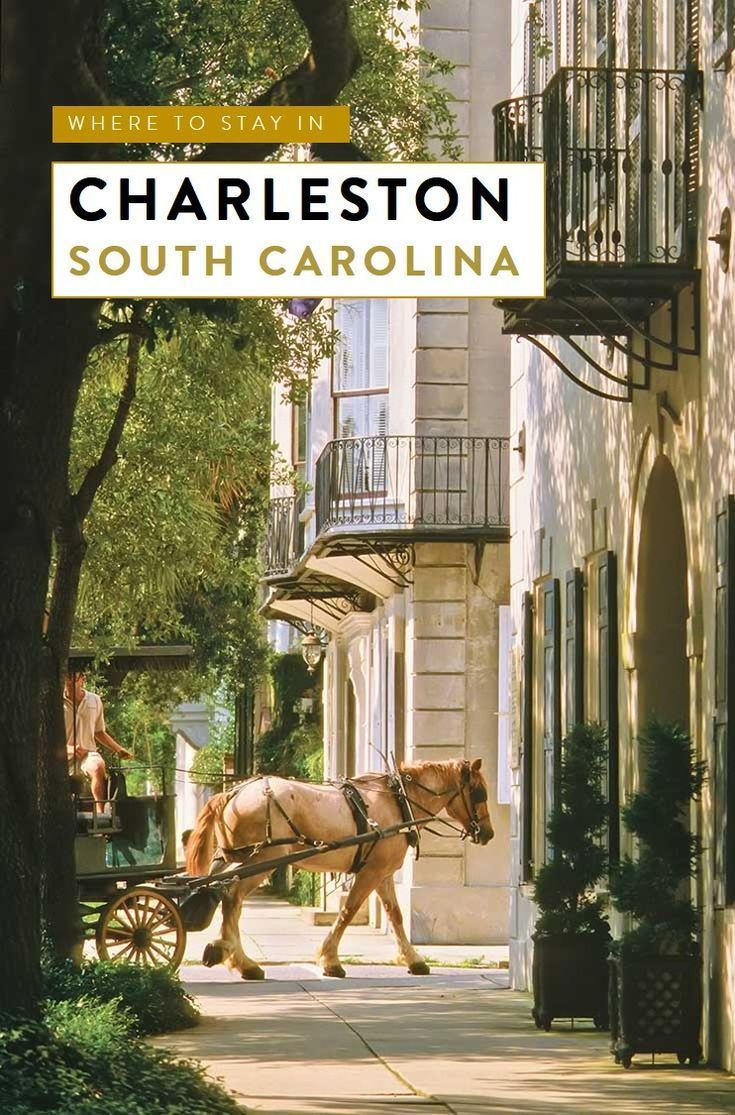 A travel guide to the neighborhoods of Charleston, South Carolina with our favorite 5 hotels in Charleston's historic districts that ooze southern charm.   Charleston SC things to do, Charleston wedding, #charleston , #southcarolina, travel tips, best small towns in the usa, southern cities, #TravelDestinationsUsaSouth