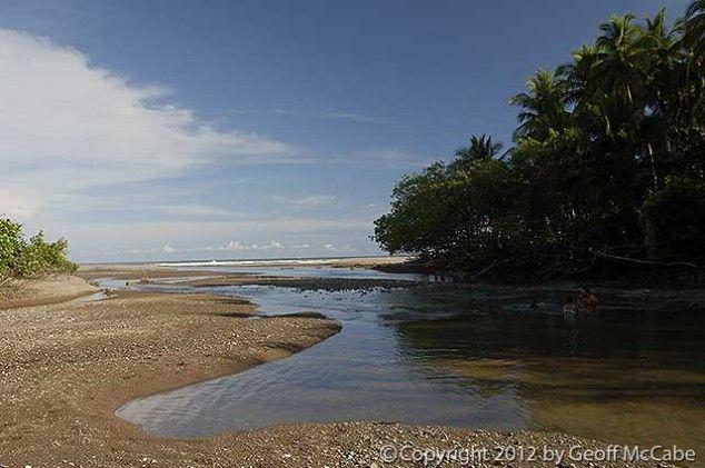 Rio Lajas Rivermouth