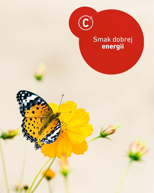Przygotujmy się do przesilenia wiosennego i dodajmy sobie zawczasu energii dobrą dietą. Co jeść, by czuć się dobrze i zapomnieć o zmęczeniu, stresie i przeziębieniach? Postaramy się Was naprowadzić, by każdy posiłek zmienił się w prawdziwe doładowanie energetyczne, dodając sił i dobrego humoru #energiawzyciu
