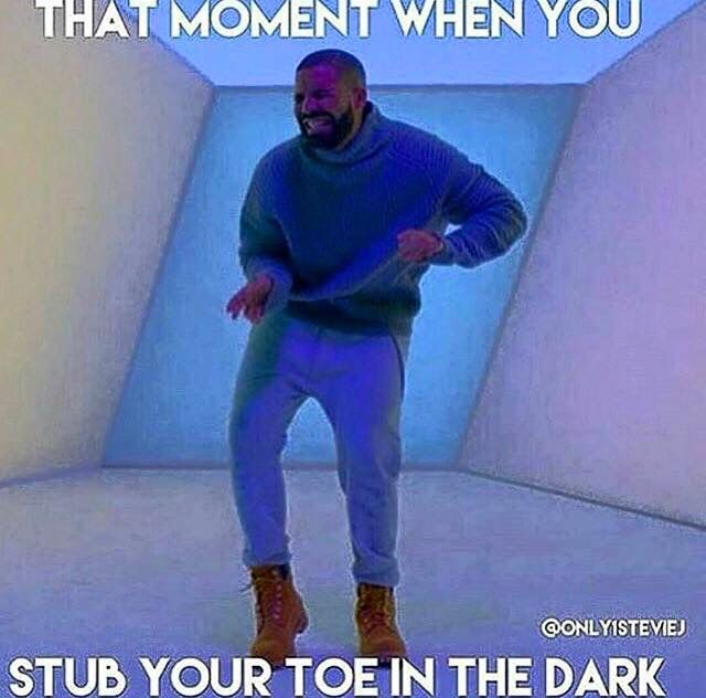 Best Drake Hotline Bling Memes Morably