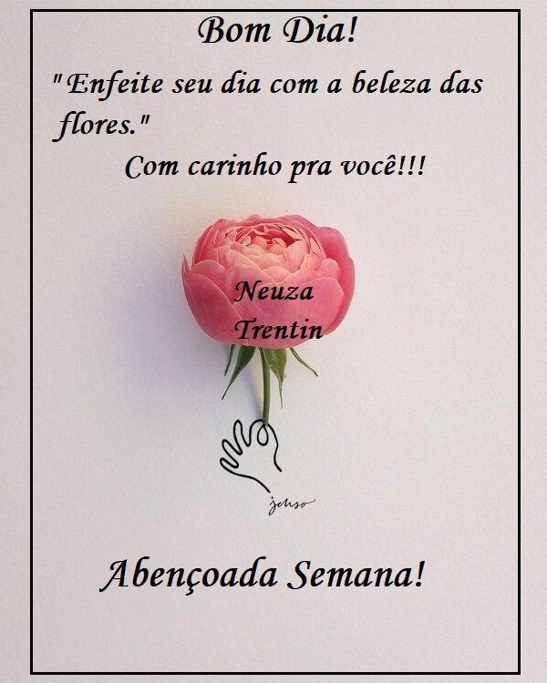 Pin De Rosa Alfredo Mechico Em B2 2 Semana Bom Dia Com Flores