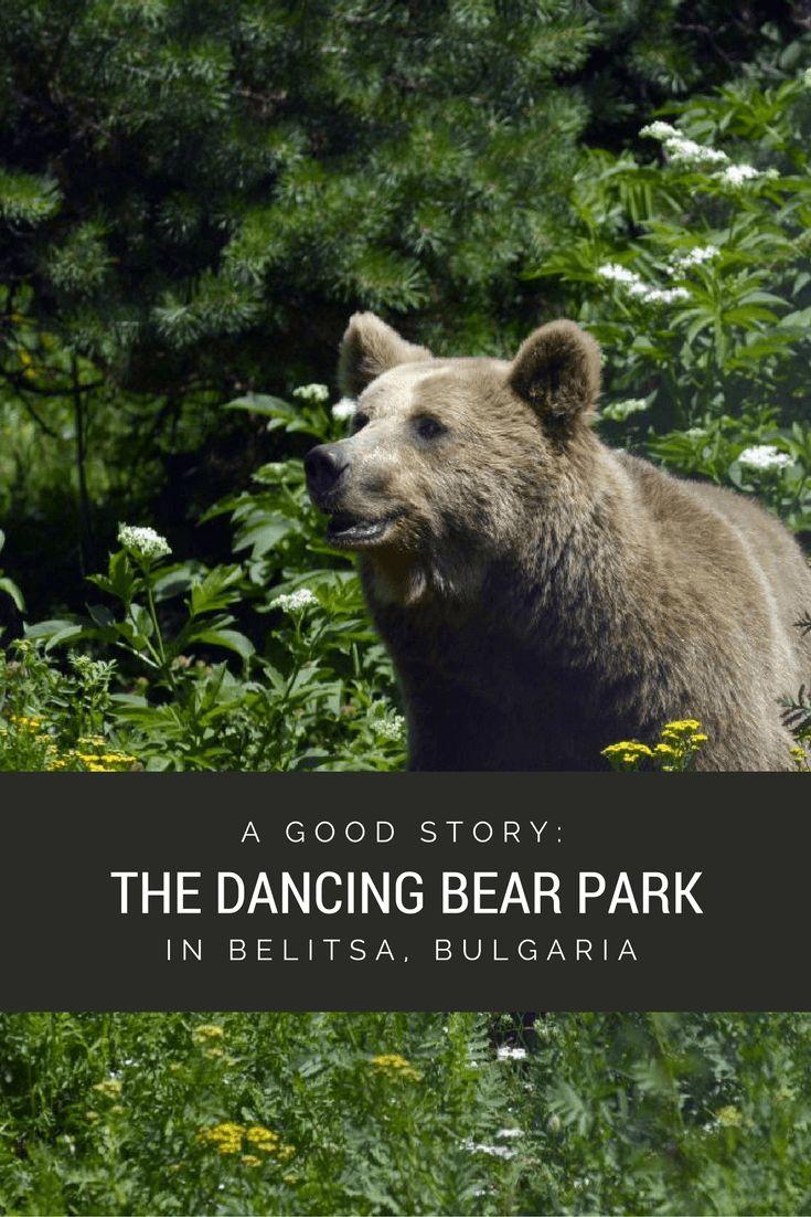 Bulgaria Bear Sanctuary