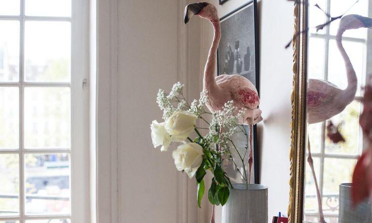 Une belle composition entre faune et flore chez Augustin Trapenard