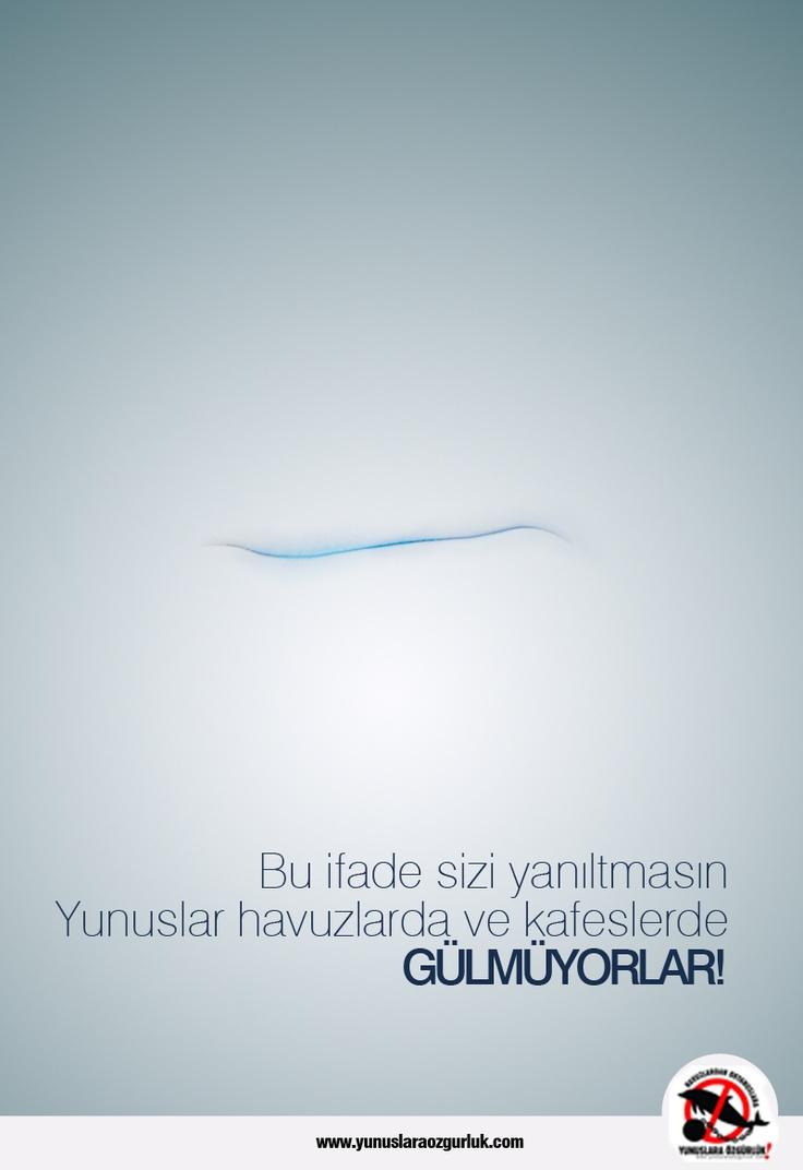 www.yunuslaraozgurluk.com