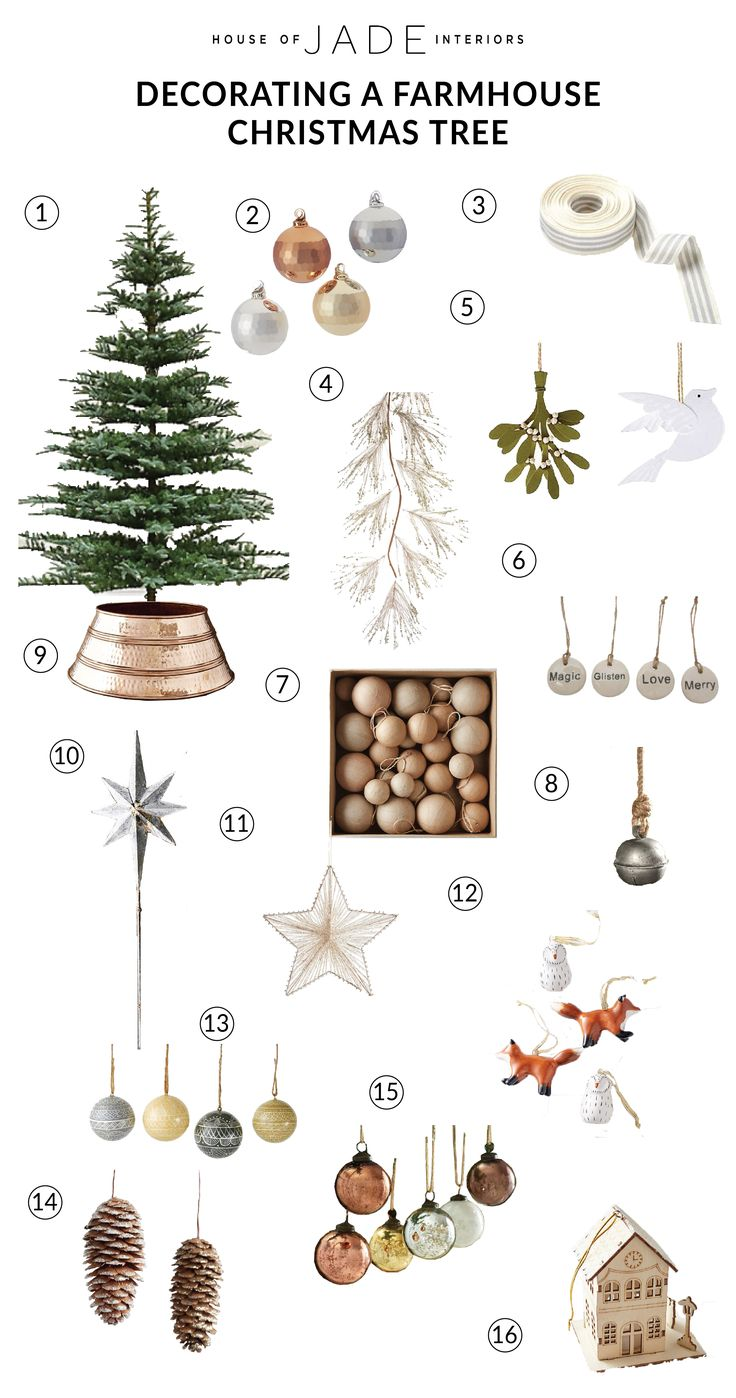 Different types of christmas trees pictures - Best 25 Live Christmas Trees Ideas On Pinterest Natural Christmas Tree Natural Christmas And Natural Dinner Set Ideas