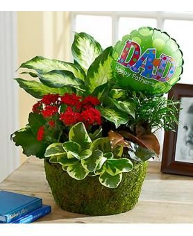 17 Best images about fathers day on Pinterest Floral